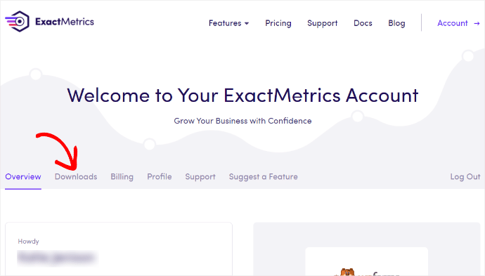 ExactMetrics Account Info