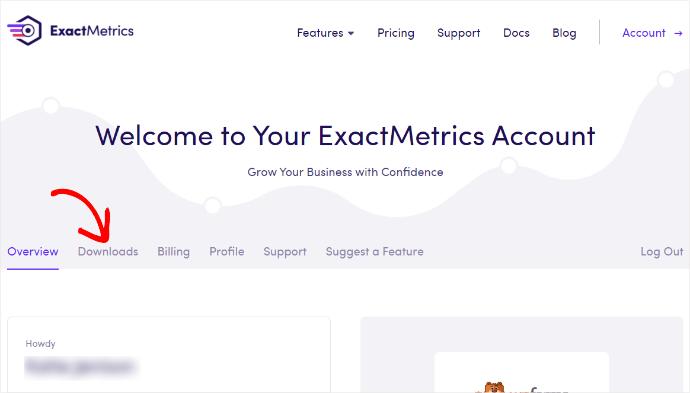 ExactMetrics Account Info