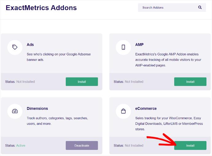 ExactMetrics eCommerce Addons