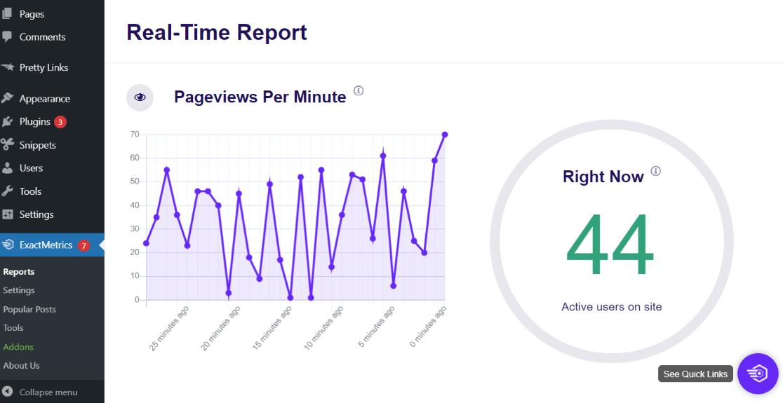 ExactMetrics Real-Time Report