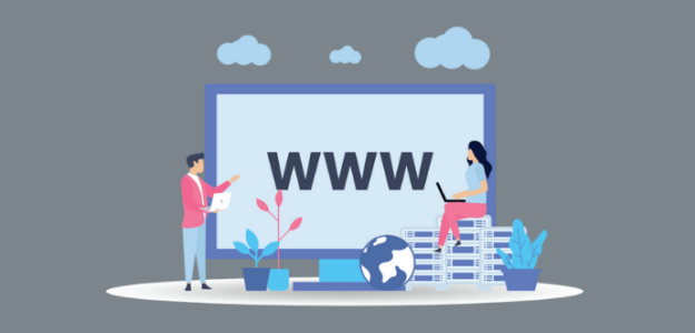 Google Search Console Domain Property Support
